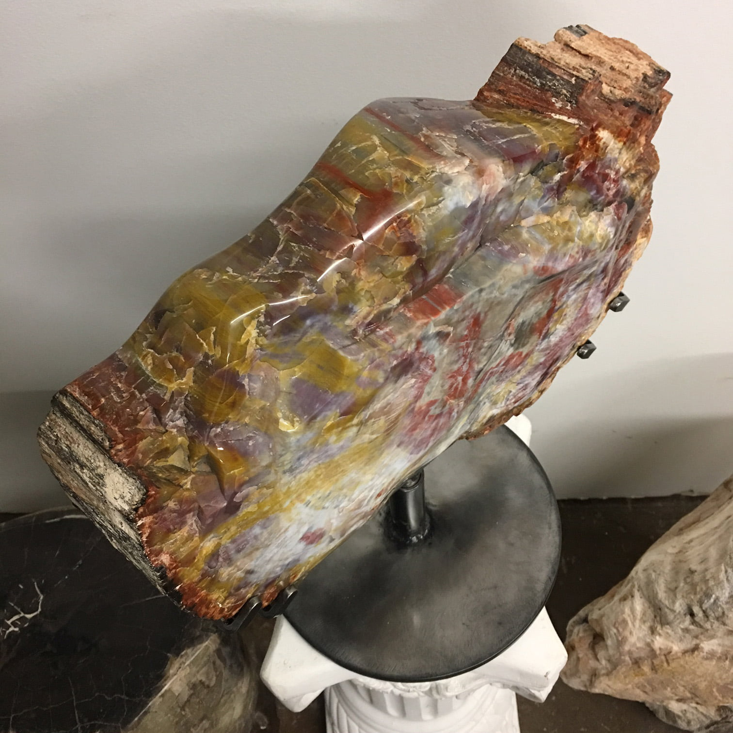 #A8 Museum Arizona Petrified Wood Sculpture Hand Polished On Both Sides - 40 Lbs Plus Rotating Stand