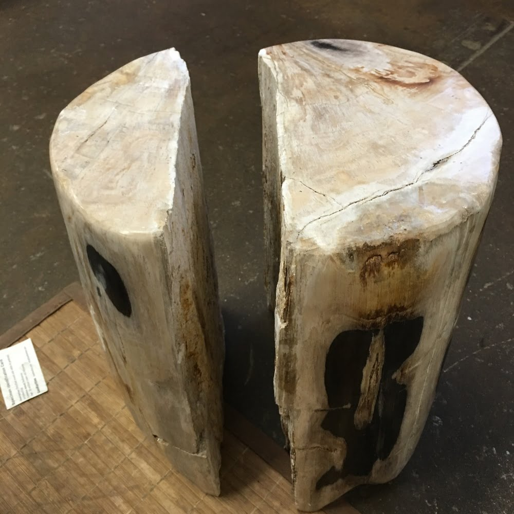 #A1 Petrified Wood (2 pieces) Art Table Or Pedestal Or Stool 112 lbs