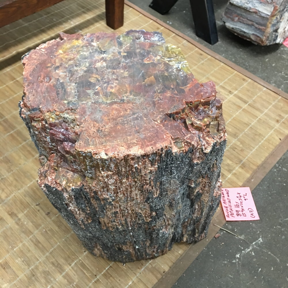 #A3 Arizona Petrified Wood Unpolished Stump 89 lbs
