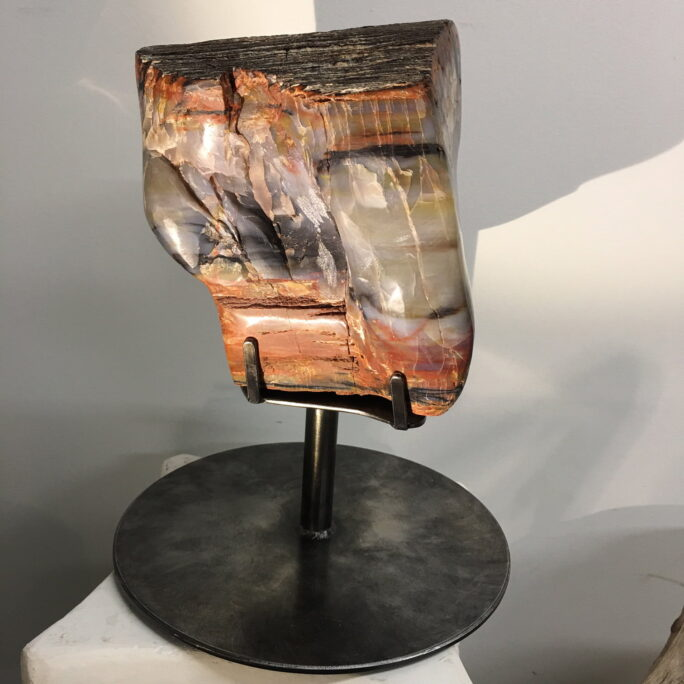 #A5 Museum Arizona Petrified Wood Hand Semi-Polished Sculpture 8″ H X 8.5″ L X 8″ W - 16 Lbs Plus Stand