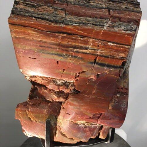 #A5 Museum Arizona Petrified Wood Hand Semi-Polished Sculpture 8″ H X 8.5″ L X 8″ W - 16 Lbs Plus Stand