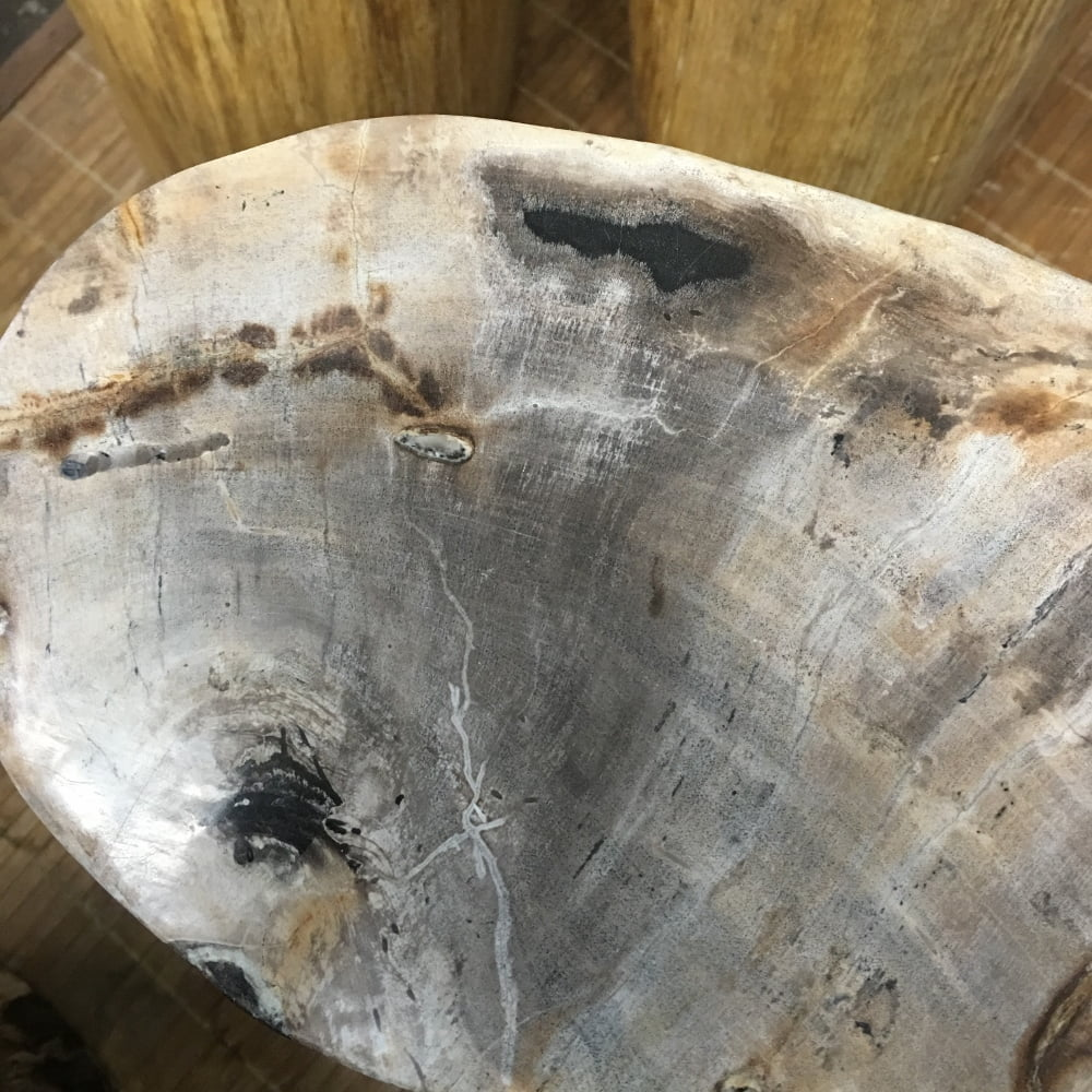 """#52 Petrified Wood Table Or Pedestal Or Stool 17.7″H x 11.5″L x 7""""W 86 lbs"""