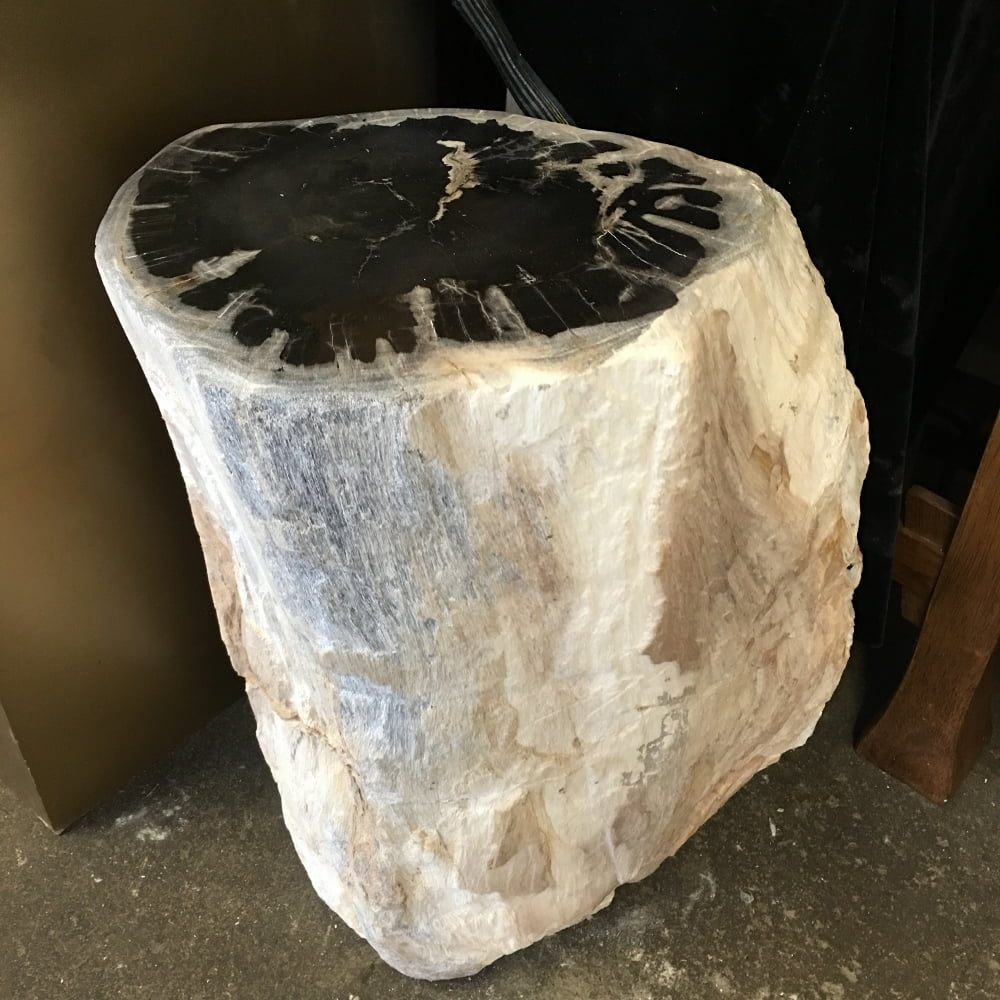 "#55A Petrified Wood Table Or Pedestal Or Stool 17.7"" H  x 11.4"" W 121 lbs"