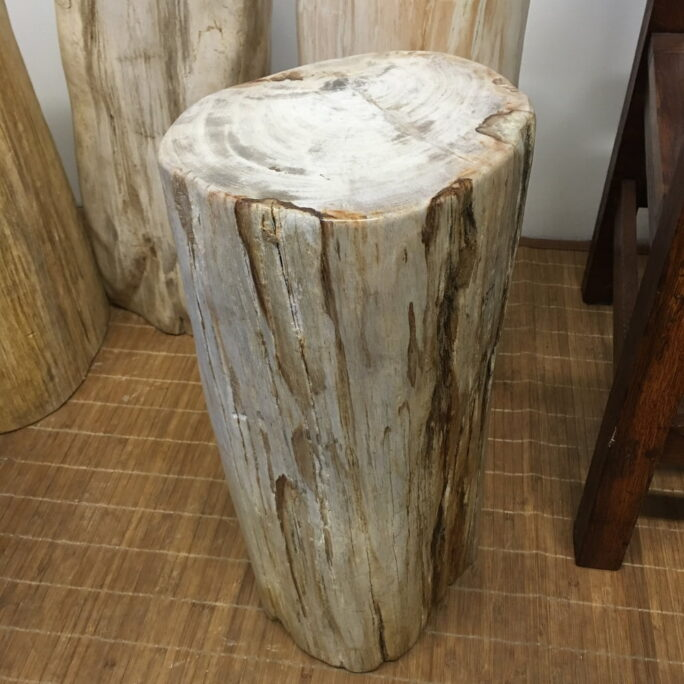 "#64 Petrified Wood Table Or Pedestal Or Stool 20"" H  x 9"" W 92 lbs"