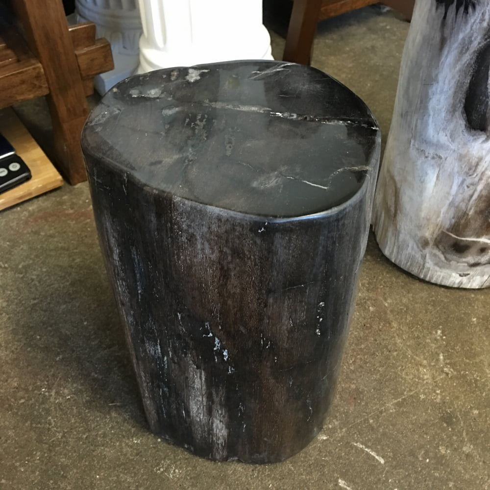 """#77 Petrified Wood Table Or Pedestal Or Stool 14"""" H x 7.5"""" W x 6.5"""" L 60 lbs"""