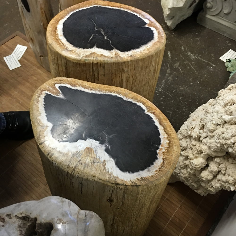 """Petrified Wood 2 Piece Matching Set Approximately:  19.5"""" H x 12"""" W  Each Piece, 118 lbs Each Piece"""