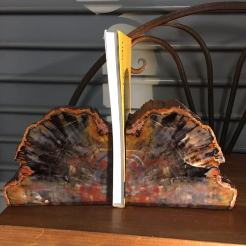 #PWE1 Petrified Wood Bookends