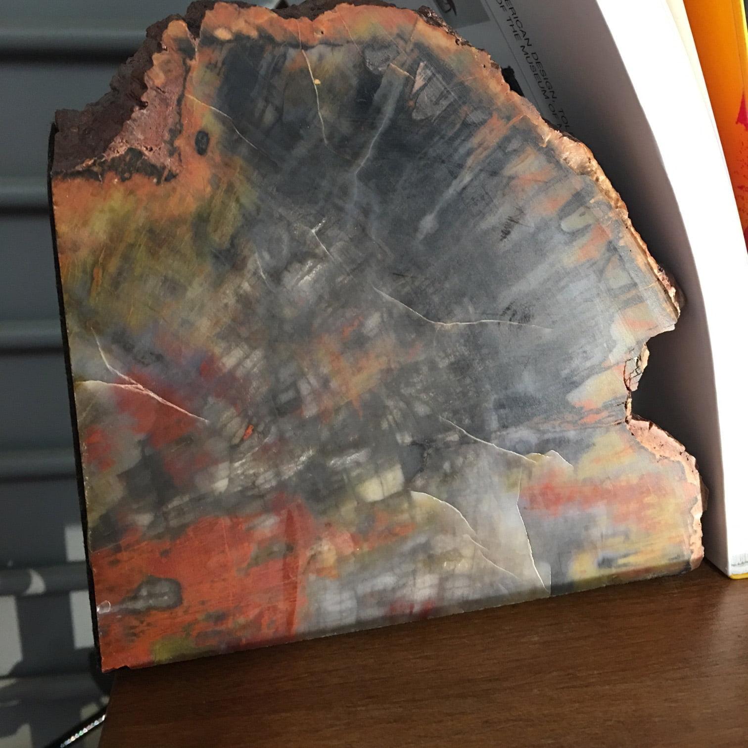 #PWE1 Petrified Wood Bookends