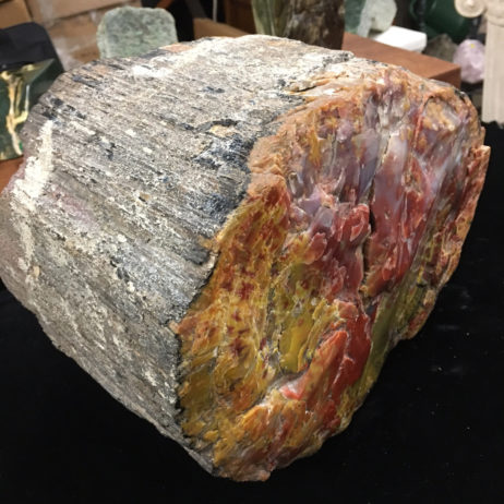 #A9 Museum Quality Arizona Petrified Wood – 54 lbs – Mantle or Display Piece