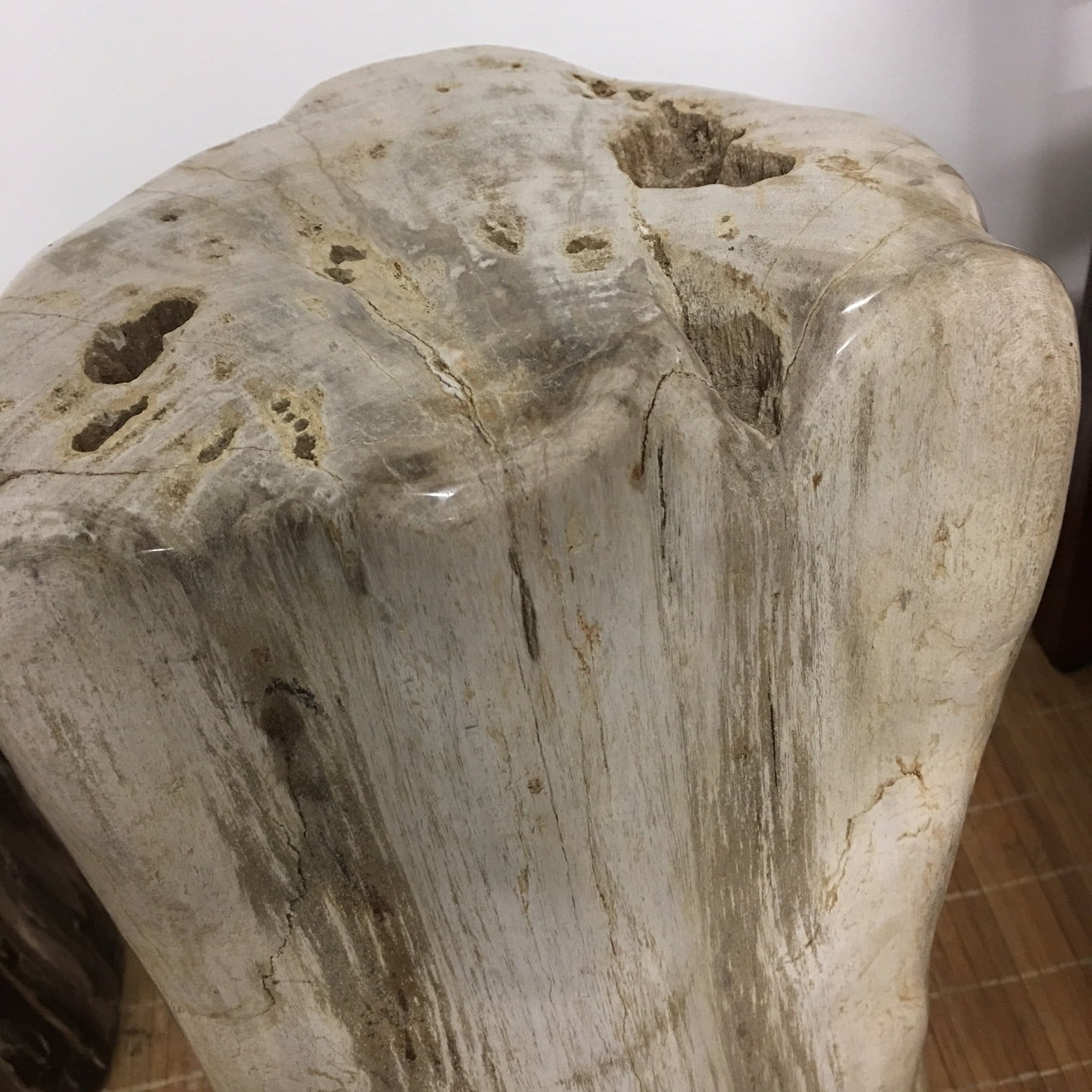 100 Petrified Wood Side Table Amazing Wood Coffee  : IPW1 10 from 45.77.108.62 size 1512 x 1512 jpeg 659kB