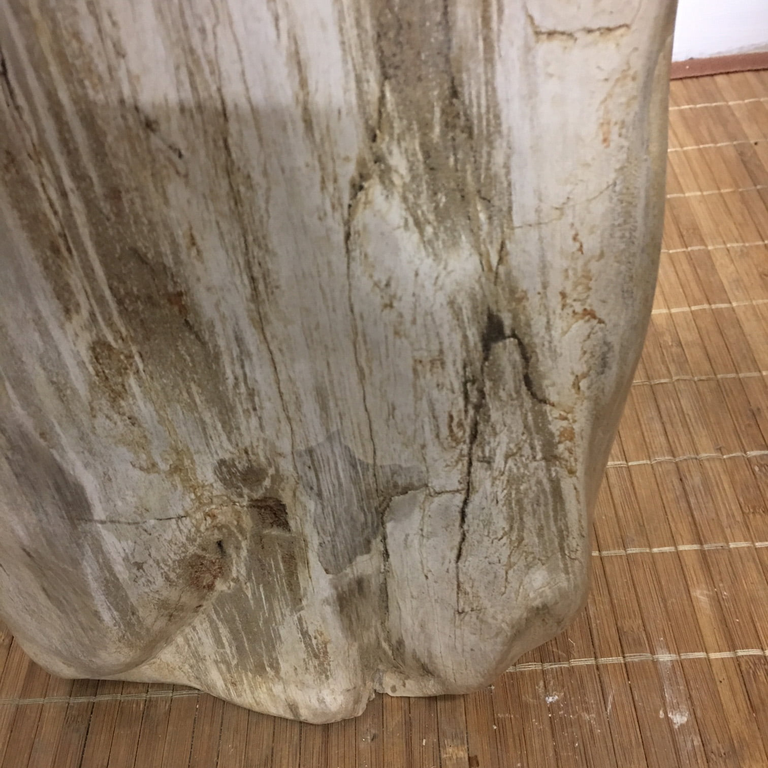 """#IPW1 Petrified Wood Table Or Pedestal Or Stool 22.75""""H x 9""""L x 7""""W 109 lbs"""