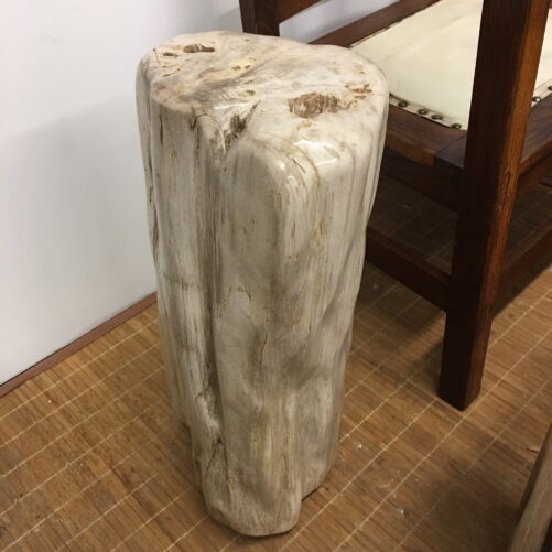#IPW1 Petrified Wood Table Or Pedestal Or Stool 22.75″H x 9″L x 7″W 109 lbs