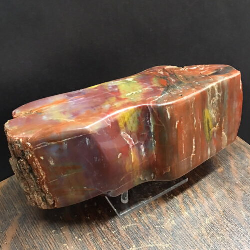 #PWD1 Arizona Rainbow Petrified Wood Display Piece