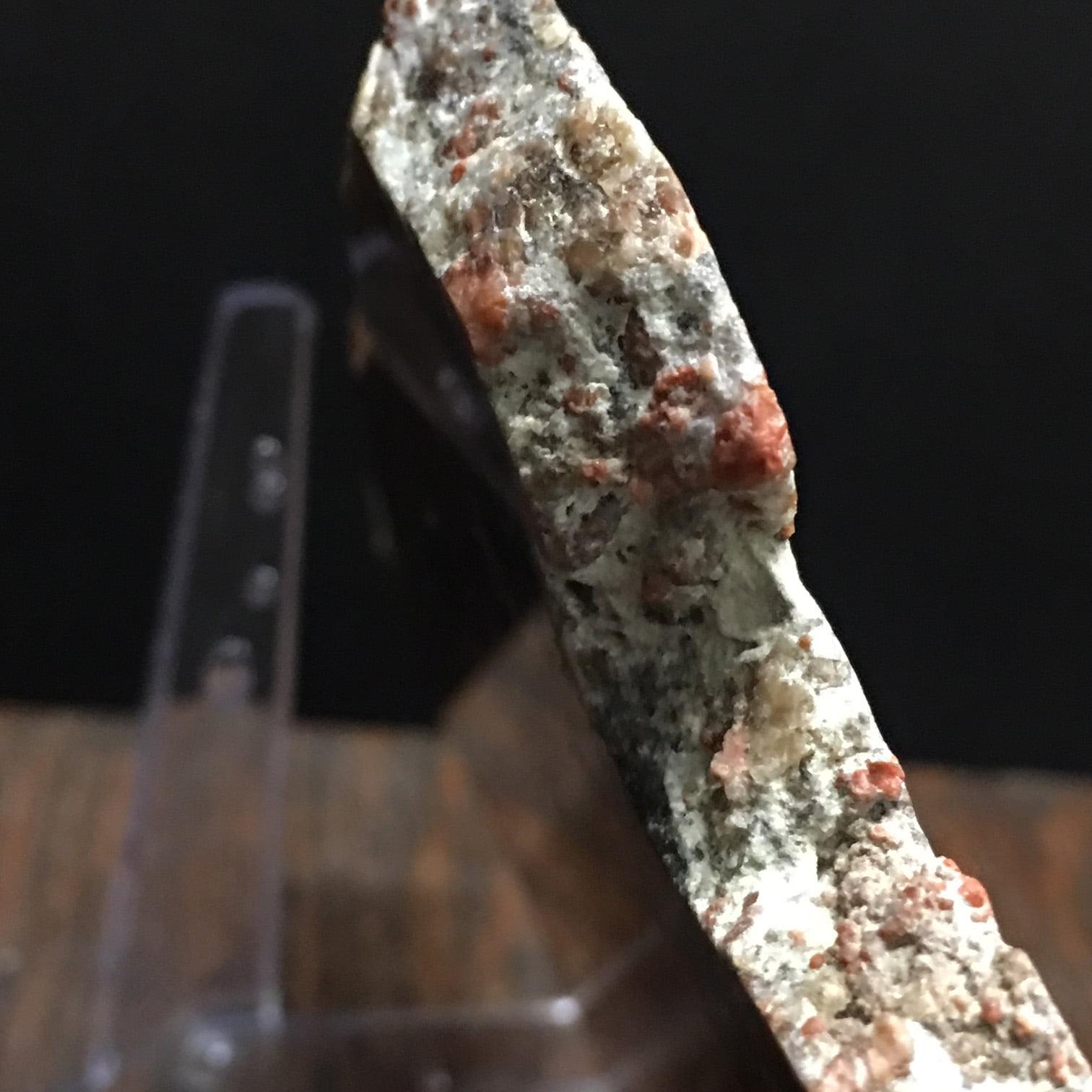 YCPW1 Yellow Cat Red Wood, A Rare Utah Petrified Wood Agate Limb Cast