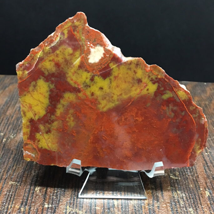 YCPW2 Yellow Cat Red Wood, A Rare Utah Petrified Wood Agate Limb Cast