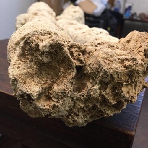 #SP1 Very Rare Stalactite Speleothem from Java Island, Indonesia