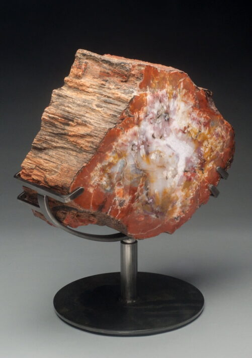 #A7 Museum Arizona Petrified Wood Sculpture Hand Polished Both Sides - 40 Lbs Plus Rotating Stand
