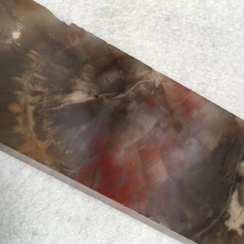 #A28 Arizona Rainbow Petrified Wood Translucent Jewelers Block