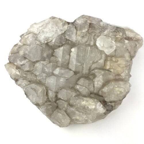 Elestial Alligator Skeltetal Quartz Cluster of Crystals QELES1-#QELES1-1