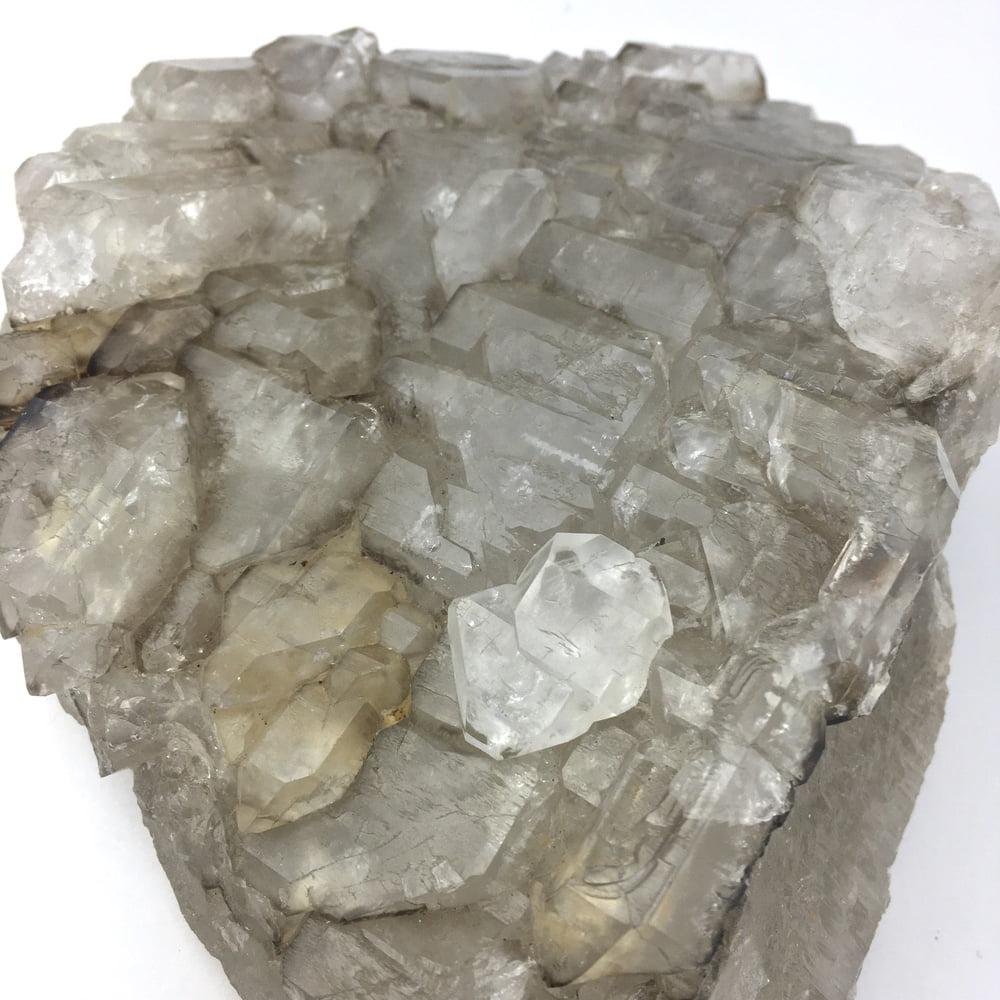 Elestial Alligator Skeltetal Quartz Cluster of Crystals QELES1-#QELES1-4