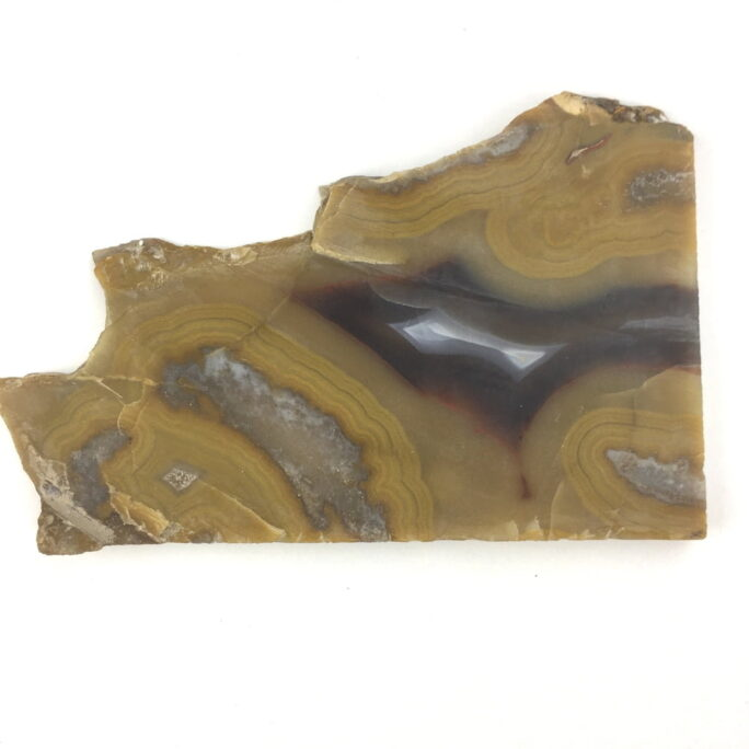 Kentucky Agate Slice Yelliw Black White Red KYA9-#KYA9-2