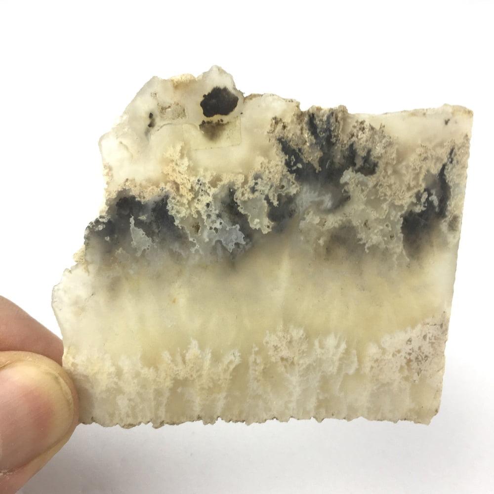 Translucent American Stinking Water Plume Agate Slice SWPA1-#SWPA1-3
