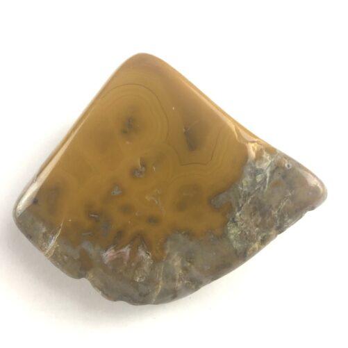 Kentucky Agate Specimen or Jewelry KYA14-#KYA14-2
